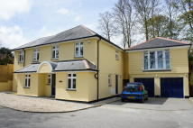 4 bedroom semi detached house to rent in Truro