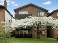 Glencalvie Lodge Flat to rent