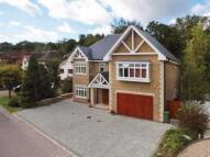 7 bedroom Detached house in Barham Avenue, Elstree