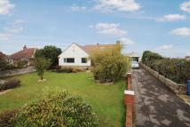 Detached Bungalow for sale in Butts Hill, Reighton...