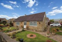 2 bed Detached Bungalow in Jameson Crescent...