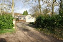 De Beauvoir Chase Detached Bungalow for sale