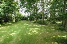 2 bedroom Detached Bungalow for sale in Cumming Road, Downham...