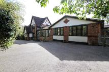 4 bedroom Detached property for sale in Kingston Hill...