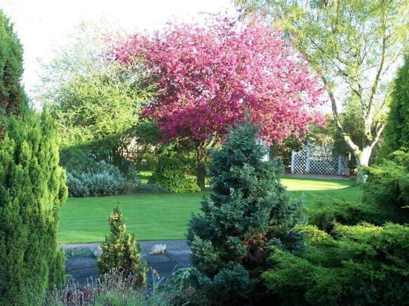 Garden Vndr 2.jpg