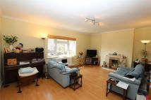 Stanhope Road Flat to rent