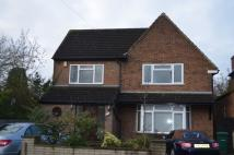 Bungalow to rent in Broadfields Avenue