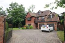 Detached property in Ledborough Gate...
