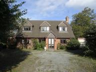 3 bed Detached Bungalow in The Orchards...