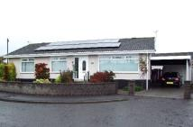Detached Bungalow to rent in Brington Place, Dundee...