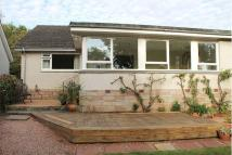 3 bedroom Detached Bungalow to rent in Greystane Road...