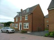 House Share in Designer Furnished 6 Bed...