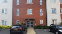 Apartment to rent in MAYNARD ROAD, Smethwick...