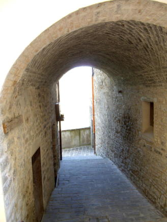 The cellar's alley