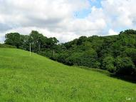 property for sale in Totnes, Devon