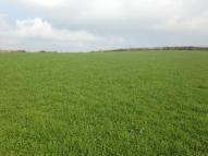 Land Land for sale