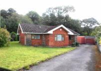 Pleasant Grove Detached Bungalow for sale
