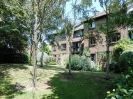 Flat to rent in Braybourne Drive...