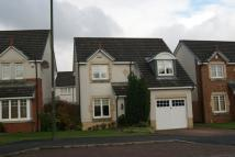 Detached Villa to rent in Tryst Park, Larbert...