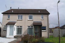 Flat to rent in   Maurice Avenue...