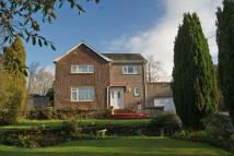 3 bedroom Detached Villa in Claremont, Alloa...