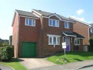 Cinderford Detached property for sale