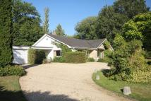 Detached Bungalow for sale in 13 Manor Farm Road...