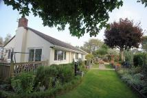 Detached Bungalow for sale in Frogham