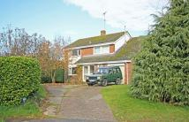 4 bed Detached house in Fordingbridge