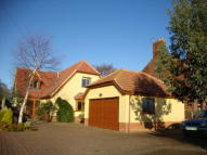 Detached property for sale in Hall Lane, Oulton...