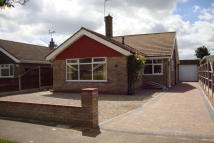 Detached Bungalow in Hill Avenue, Gorleston...