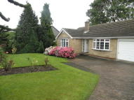Church Street Detached Bungalow to rent