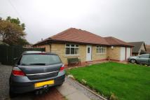 3 bed Bungalow to rent in Albion Street, Gateshead...