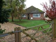 Bungalow to rent in Merton Road  Watton