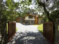 5 bed Detached house to rent in Montana, Wilderton Road...