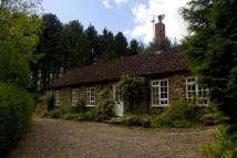 Colburn Cottage to rent