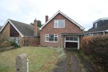 3 bed Bungalow for sale in Winster Avenue...