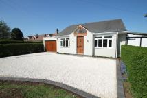 2 bed Bungalow for sale in Watnall Road, Hucknall