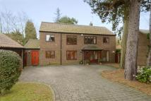 property for sale in Cranleigh