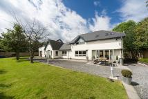 Detached property for sale in Potters Bank, Durham