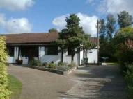 Cottage to rent in Rosemary Lane, Egham...
