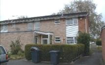 Maisonette to rent in Ilex Close...