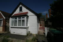 Detached Bungalow in School Road, Ashford...
