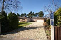 3 bedroom Detached Bungalow for sale in Overhill Road, Wilmslow...