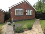 2 bed Detached Bungalow in HALESOWEN, Welbeck Close