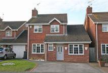 Detached house for sale in Catkin Way...