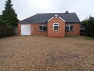 Detached Bungalow in Reading Road, Winnersh...