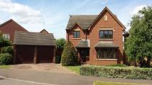 Detached home to rent in Greendale, Huntingdon...