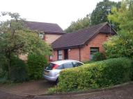 2 bedroom Detached Bungalow to rent in Hazel Croft, Werrington...