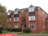 Apartment to rent in Holm Oak Park...